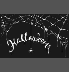 white spider and white spiderweb on black vector image