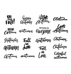 Autumn hand written and phrases vector