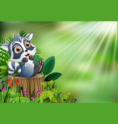 Cartoon of baby raccoon sitting on tree stump with vector