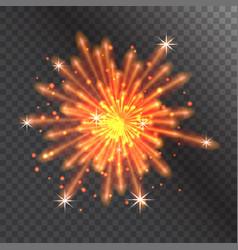 firework celebration holiday vector image