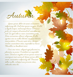 Floral autumn template vector