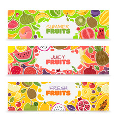 fruits banners colorful fruit design summer vector image