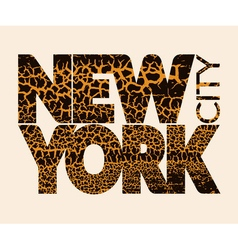 New York city Typography Graphic Craquelure vector image