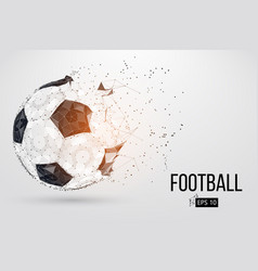 silhouette of a football ball vector image