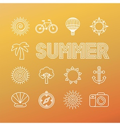 summer banner and background in trendy linear vector image
