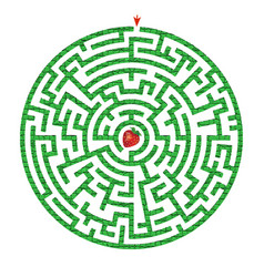 green circle maze with strawberry inside vector image