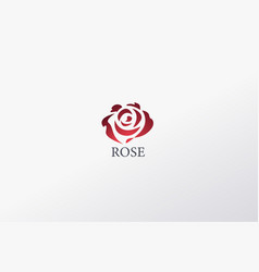 beautiful contour logo with rose flower vector image