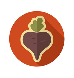 Beet flat icon vegetable vector
