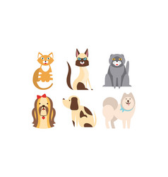 cats and dogs different breeds set cute pets vector image
