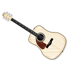 left handed acoustic guitar vector image