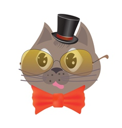 smart cat vector image