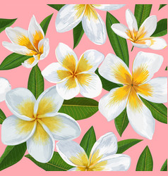 Tropical seamless pattern with plumeria flowers vector