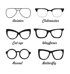 Set types of sunglasses vector image