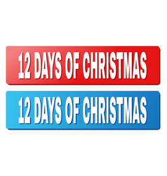 12 days of christmas caption on blue and red vector