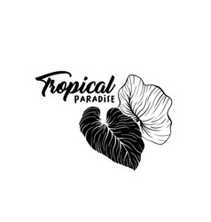 beach party hand drawn silhouette logo layout vector image