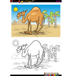 cartoon camel on desert coloring book vector image