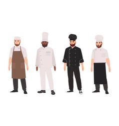 collection of chefs qualified cooks professional vector image