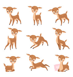 Cute baby deer adorable brown forest animal set vector