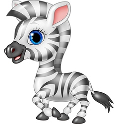Cute zebra posing isolated on white background vector image vector image