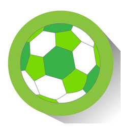 isolated soccer ball vector image