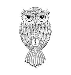 Owl bird isolated with clock face on stomach vector