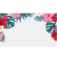 Summer tropical border white background vector