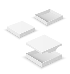 White square flat empty 3d boxes isolated vector image