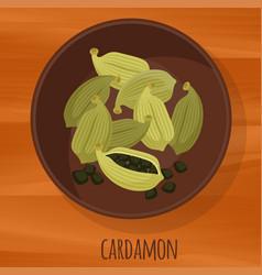 cardamon flat design icon vector image