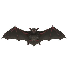 Bat vampire with sharp teeth spread its wings vector