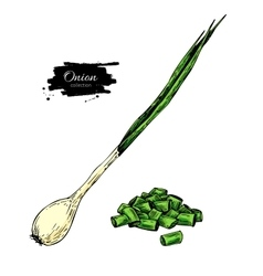 Green spring onion set hand drawn vector
