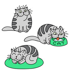 grey cats emoticons set isolated vector image