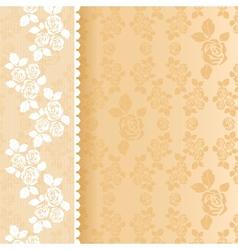 Lace beige square vector image