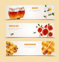 three honey banner set vector image
