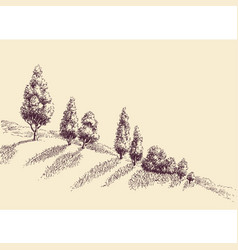 trees growing on a hill slope sketch vector image