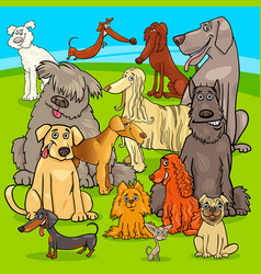 breed dogs cartoon characters group vector image vector image