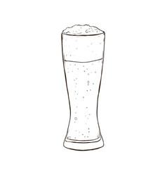 beer sketch vector image