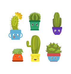 collection cute cactus and succulent plants in vector image