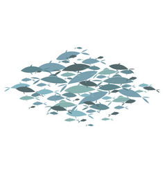 colored silhouettes groups sea fishes vector image