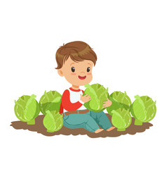 Cute little boy playing with cabbage in the garden vector