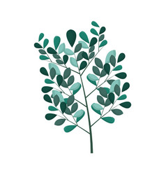 green foliage icon vector image