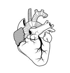 Heart tattoo art design vector