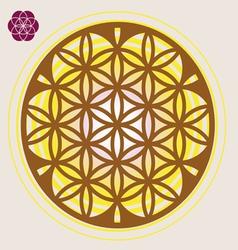 power seed mandala vector image