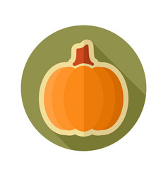 pumpkin flat icon vegetable vector image