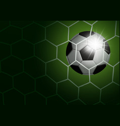 soccer ball in goal with light vector image