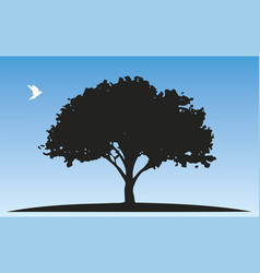tree silhouette and a white pigeon vector image