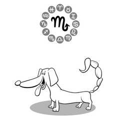 cartoon dog as scorpio zodiac sign vector image