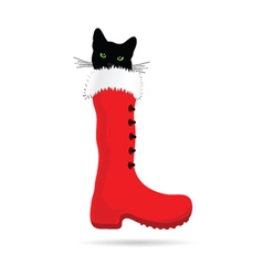 Cat with green eye and new year boot vector