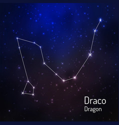 Constellation in the night starry sky vector