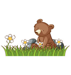 isolated picture little bear in garden vector image
