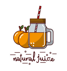 orange fruit and natural juice glass and straw vector image